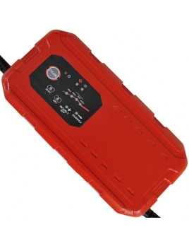 Solution CHARGER 12/24V 25A